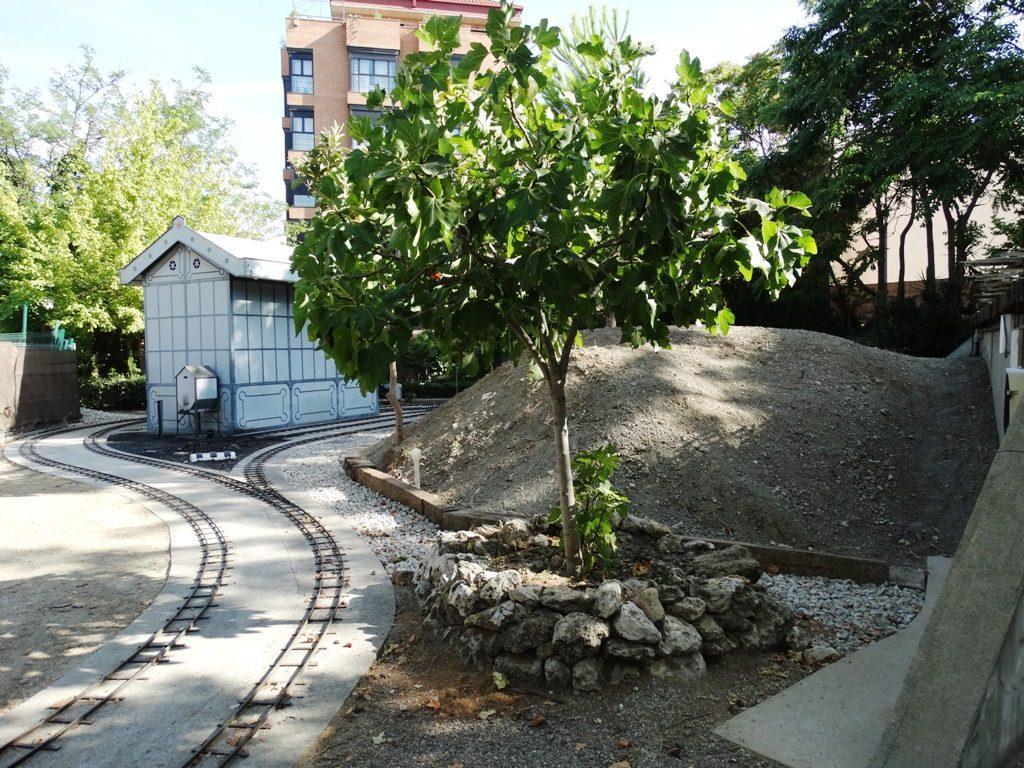 Nueva forma de la montaña central del parque