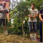 Plantando el olivo en la montaña central